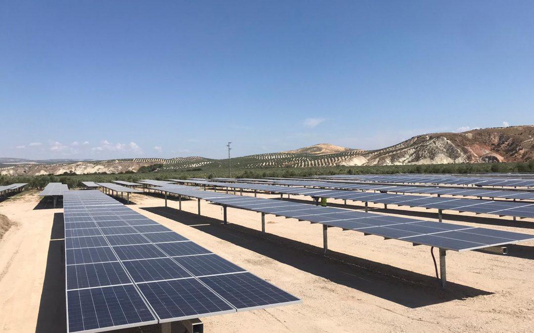 Proyecto placas solares 2 megavatios en Oporto